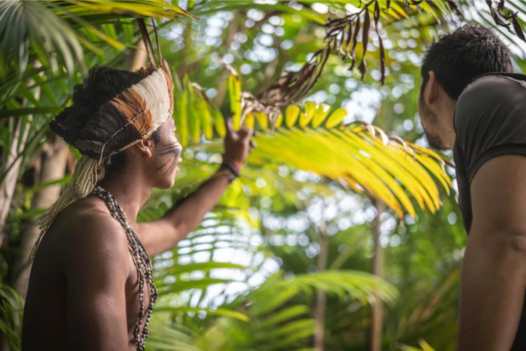 OKA Amazonie - Muséum d'Histoire naturelle de Toulouse